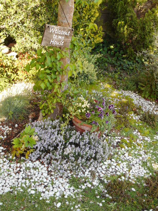 5月お庭がキレイです♡